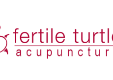 Fertile-Turtle-Acupuncture.png